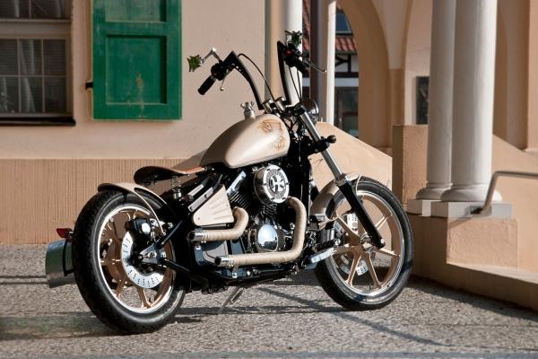 W&B Custom Bikes VN 800 old school